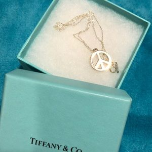 Beautiful silver Tiffany&Co necklace